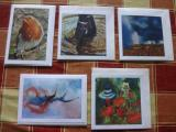 Giclee Cards £2