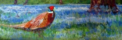 Pheasant in the Bluebells small.jpg